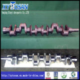 Crankshaft for Hino K13c/ H07D/ J08c/ H07c/ J05c/ W06D/ Ep100